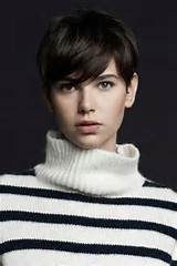 ... in these short pixie haircuts. It is also the best haircut of 2013